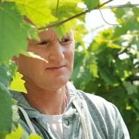 Kis kertész, nagy borász