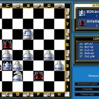Sakk - két szép matt