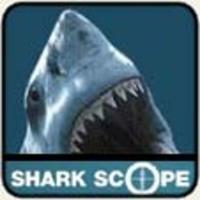 Halacska vagy cápa - a SharkScope tálalásában