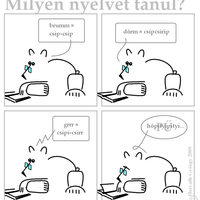 Polármackó nyelvet tanul