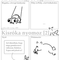 Kisróka nyomoz 2.