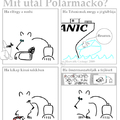 Mit utál Polármackó?