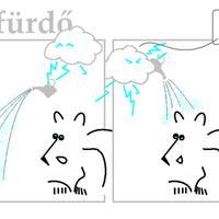 Polármackó vendége: A viharfelhő