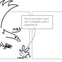 Polármackó vendége: A nyúl