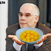 Nem csurgott a tojássárgája Balog miniszter arcáról