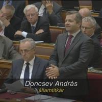 Pityinger-ügyi államtitkára lett a kormánynak