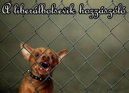 Ki az a liberálbolsevik - kiskutya.jpg