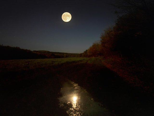 Kié a holdvilág?