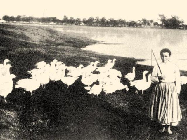 A libapásztorból lett királyné