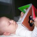 Mikor kezdődik az irodalmi nevelés?