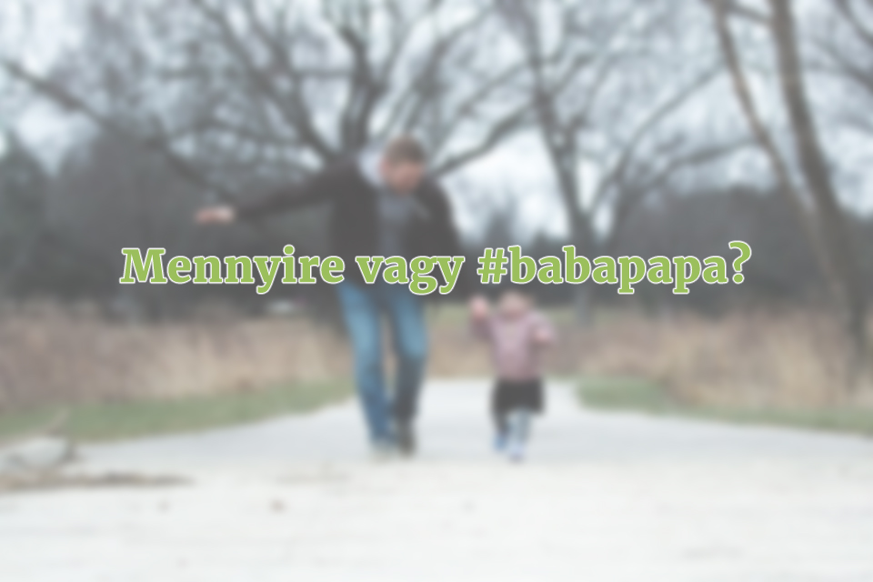 apanak_lenni_meno_babapapa_marka_vagy_baby_chameleon.jpg