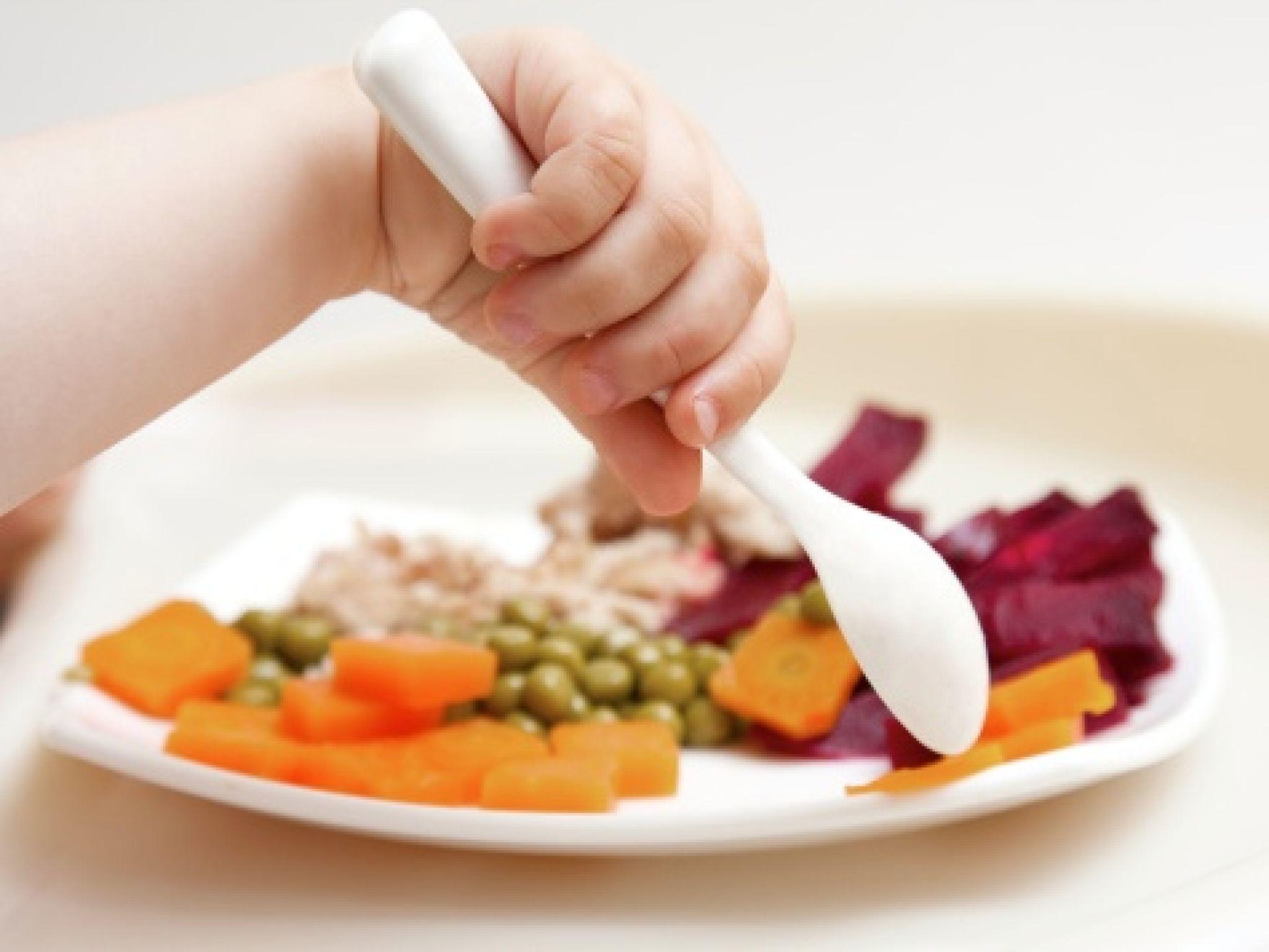 kids-nutrition_s4x3_jpg_rend_sniipadlarge.jpeg