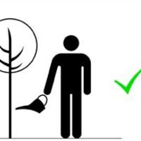Ments meg egy fát!