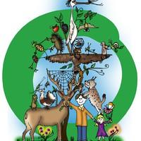 Mit tehet egy kis környezetvédő?