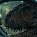 Szigorú megszorítást alkalmaztak a Jurassic World: Bukott birodalom sztárjai ellen