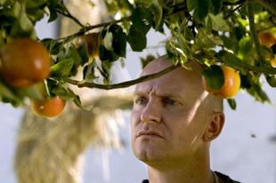 Ádám almái – 2005 – ABC
