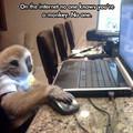 A hülye majom megint durvul