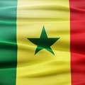 Csapatmustra - Szenegál - H. csoport
