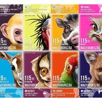 Állati aranyos bélyegek