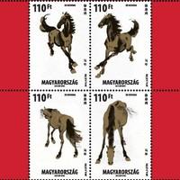 A ló évében érdemes szülni és bélyeget venni