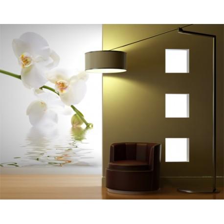 Orchidea fotótapéta