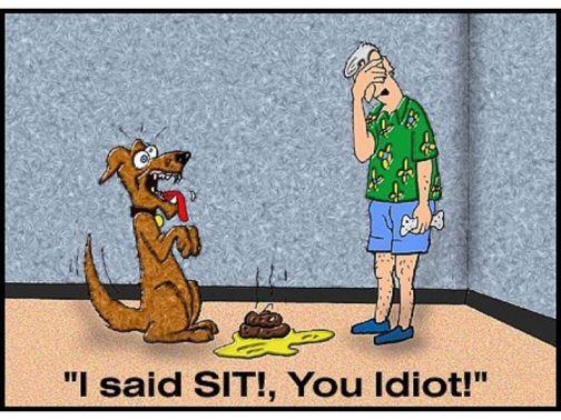 funny-dog-cartoon-i-said-sit1.jpg