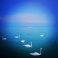 10 élménymozaik a nyárról