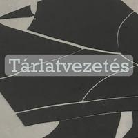 Kárpáti János Iván – To take the liberty of doing something - Tárlat vezetés 2018.11.09. 18:30-19:30