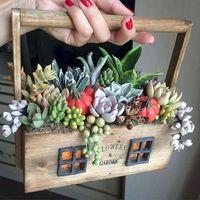 Csináld magad: mini kaktuszkert