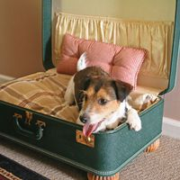 Polc, asztal, tálca: ennyi mindenre jó a régi bőrönd!