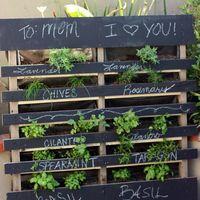 Ötletes fűszerkert megoldások, szabadban és lakásban egyaránt!