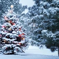 Praktikus karácsonyi készülődést! – 2. rész