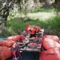 Rendezzünk kerti partit!