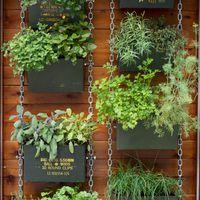 Így kertészkedj az erkélyen!