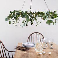 Ez a növény legyen a lakásodban, ha az örök szerelmet keresed!