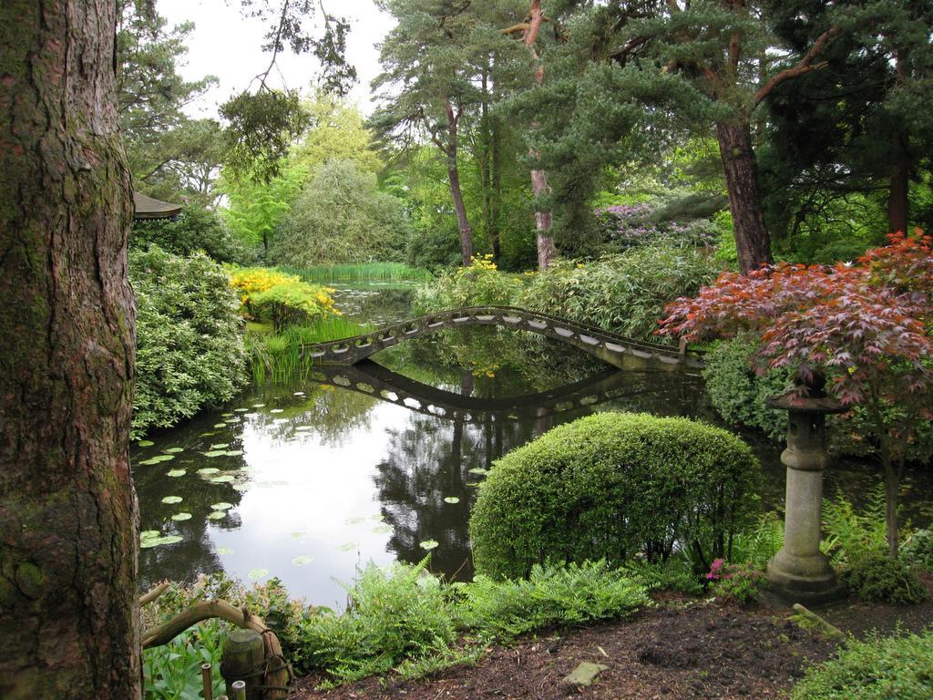beautiful-japanese-garden-2.jpg