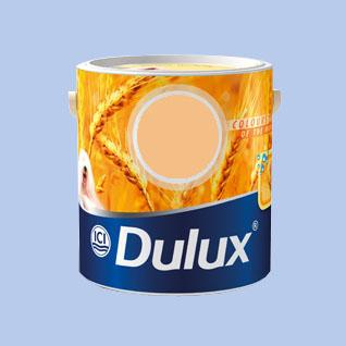 dulux arany.jpg