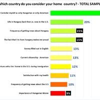 Az újkori amerikai honfoglaló magyarok haza és identitásválasztása