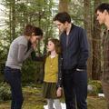 Alkonyat - Hajnalhasadás II. rész (The Twilight Saga: Breaking Dawn - Part 2) - írta: Luke
