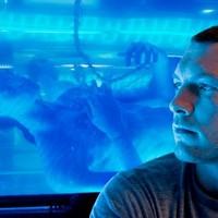 Az első hivatalos Avatar kép