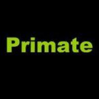 PRIMATE - MAR A FACEBOOKON IS