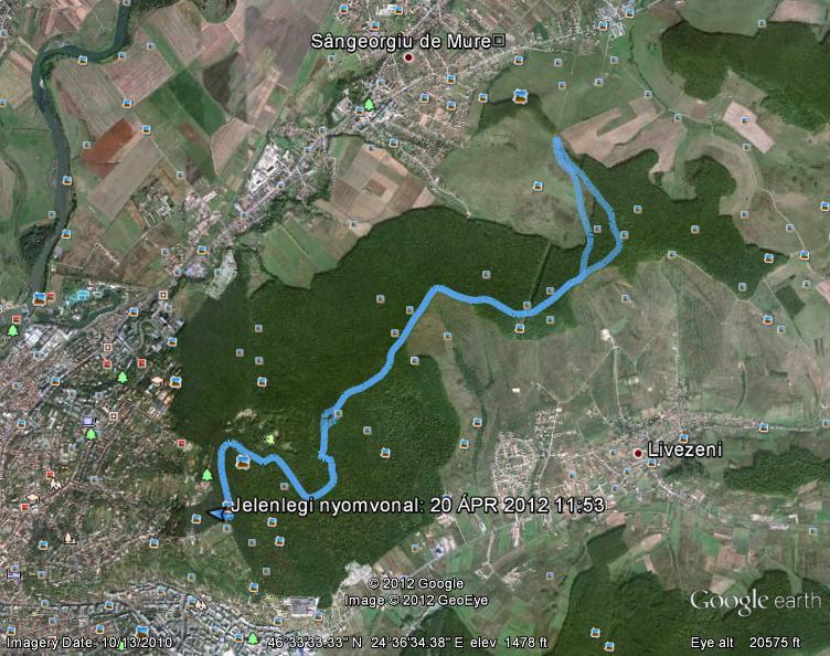 10 km.JPG
