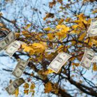 Hol vállalkoznál: az USA-ban, az eurózónában vagy itthon? 2.