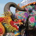 Amikor az elefánt elindul……ülj fel a hátára
