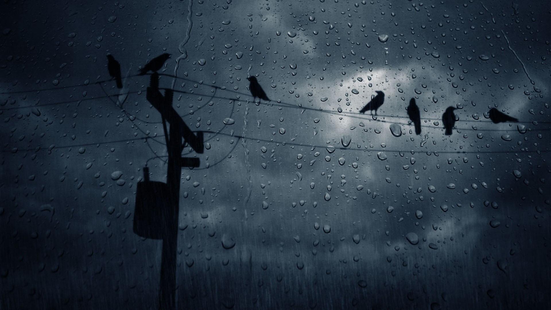 rain_ver2_by_linkingeek.jpg