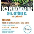Őszi pataktakarítás - Október 22. | Mókus-híd | 9:00