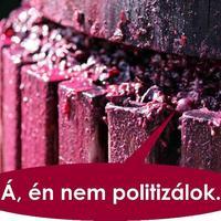 Politizálnunk nem akármi okért kell!