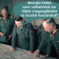 Szegény, öreg Orbán Viktor