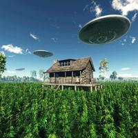 UFO-T LÁTNI TILOS!
