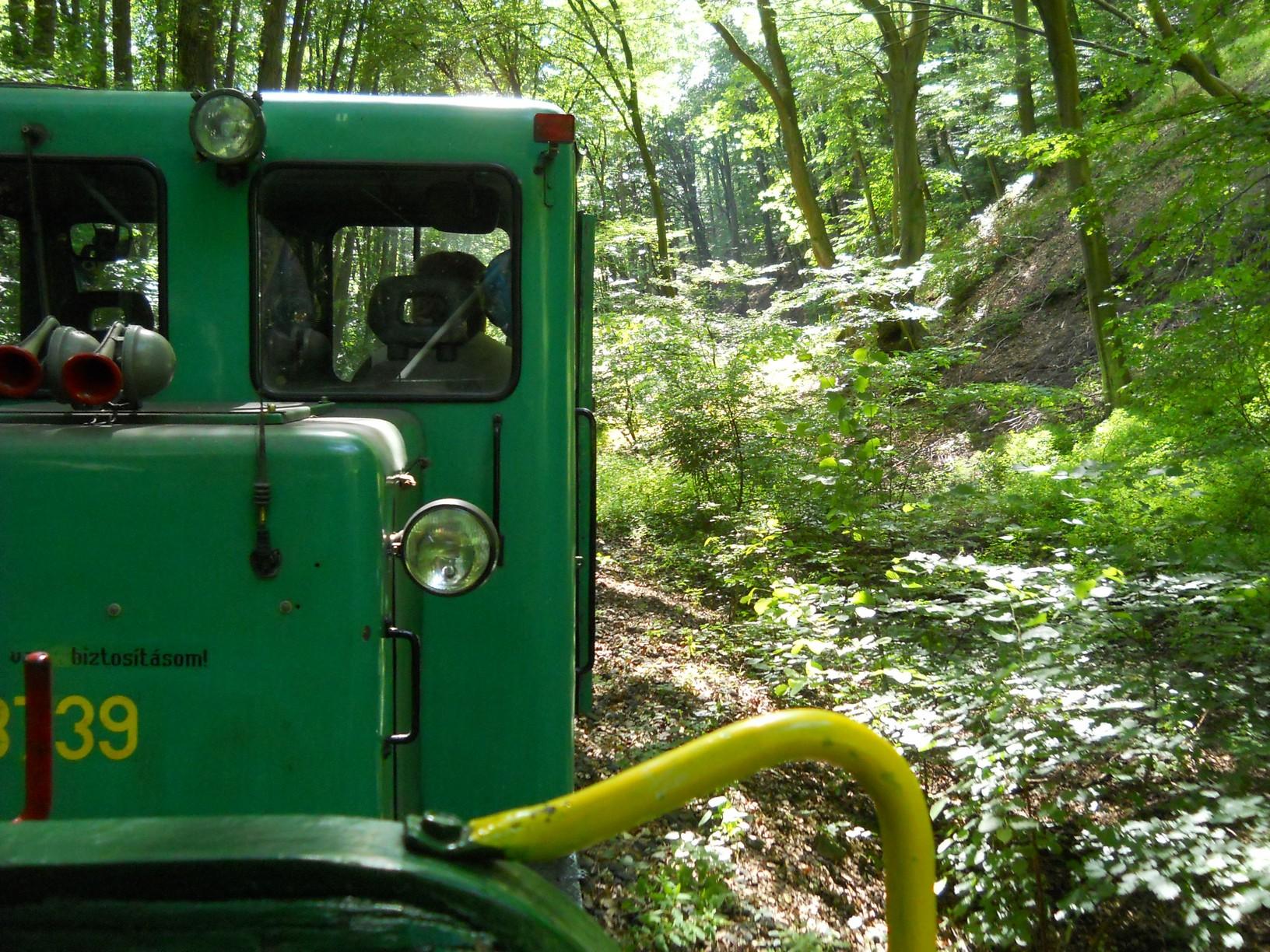Az idén 105 éves kisvasút alapvetően erdészeti célból épült 1908-ban. Személyszállítás már 1969-től zajlott, de 1992-ben megszűnt a vonalon. 1996-ban a térség önkormányzatai közalapítványt hoztak létre a kisvasút megmentésére. 1998-ban a nagybörzsönyi önkormányzat kezelésébe került, és kitartó munka árán 2002-ben újraindult a forgalom. Érdekesség, hogy a Kisirtás–Nagyirtás csúcsfordítós vonalszakaszt 1999-ben ipari műemlékké nyilvánították